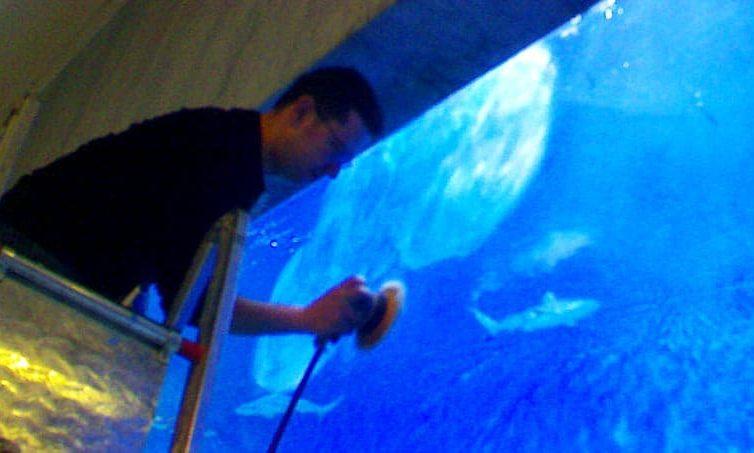 Aquatik Yapılar için Akvaryum Bakım ve Yönetim Hizmetleri